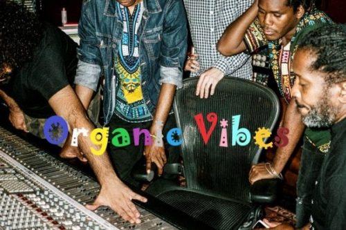 Organic Vibes 16 07 2019 | Radioactive International